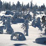 Поход в зиму на гору Воттоваара 7-11 марта