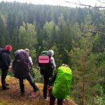 Осенний Злынский лес. 3.11-5.11